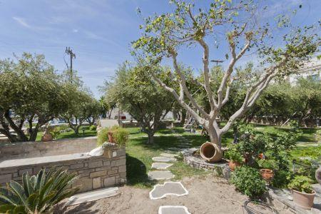 Pension-sofia-garden-view